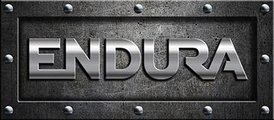 Endura doors security doors